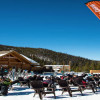 Labonte's Beach: The Ultimate Spring Skiing Destination