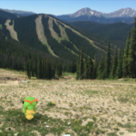 Pokémon Go to Keystone!